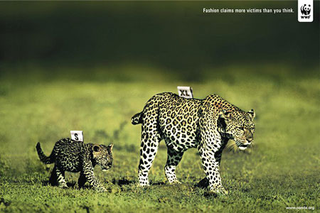 Photo of WWF: Fashion claims more victims than you think