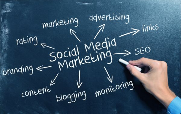SEO and Social Media to dominate the niche market