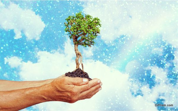 Photo of How to inculcate Sustainable Development in the CSR Policy?