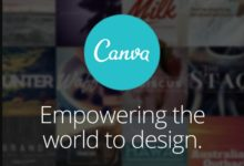 A guide to Canva