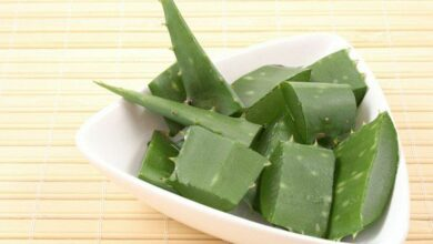 Photo of 7 Health benefits of aloe vera
