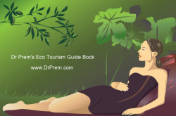 Expert's Take on Ecotourism and Wellness Tourism