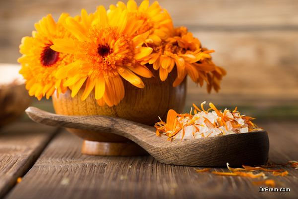 Photo of The health values and medicinal benefits of Marigold