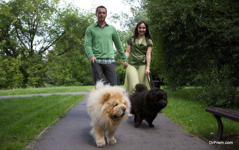 health-benefits-associated-with-regular-dog-walking