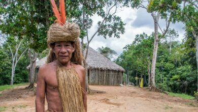 Photo of Amazon tribes to get free Internet to protect against illegal logging