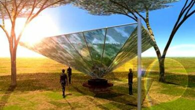 Photo of WatAir: Leaf-inspired low-tech can extract fresh water from thin air