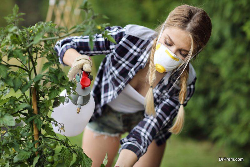 Organic-or-natural-pesticides