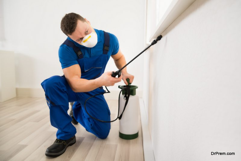 Photo of 5 Tips to hiring a pest control company and minimize health risks