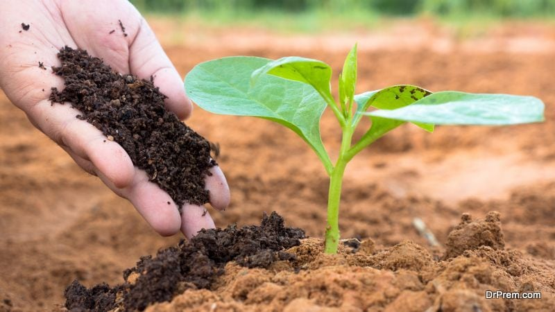 Using manure