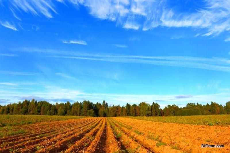 environmentally friendly farming