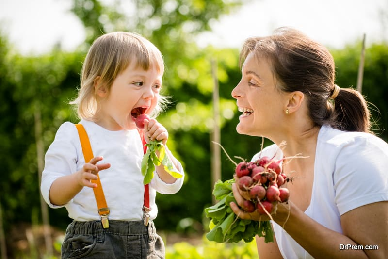 Start-a-Vegetable-Garden