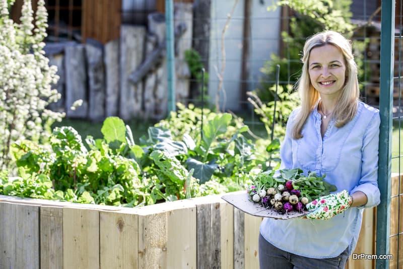 Best plants for your garden