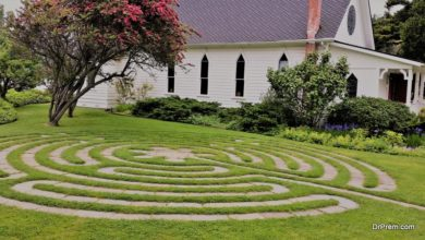 Photo of How to make a maze in your backyard