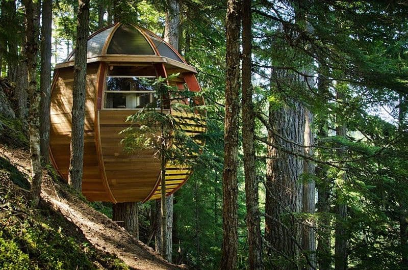 Egg Shaped Hem-Loft Tree House