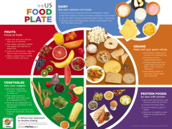 My food guide plate