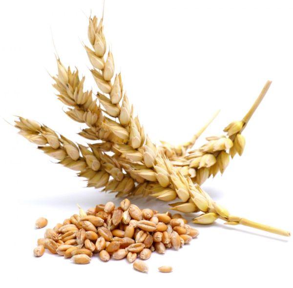 Bulgur-Wheat-cereal