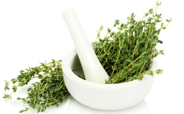 thyme-in-bowl-e1365089427971
