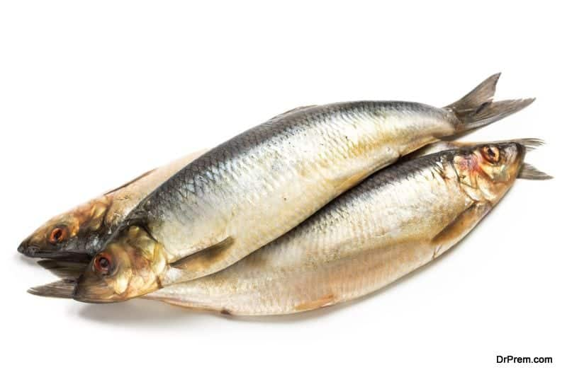 Salted herring fish
