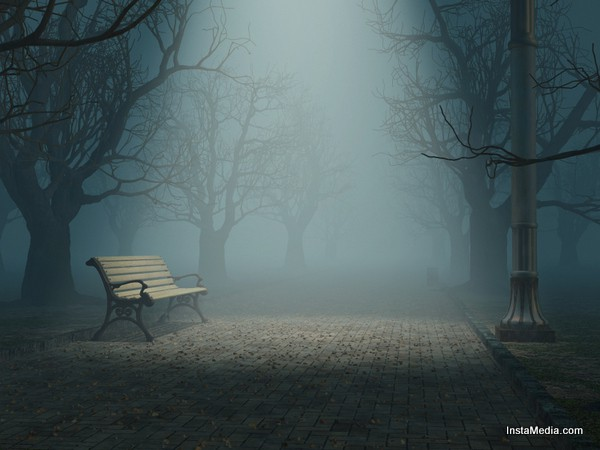 lonely bench in misty park
