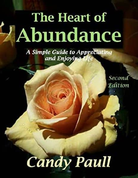 The Heart of Abundance A Simple Guide to Appreciating and Enjoying Life