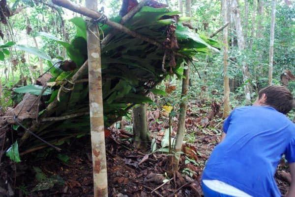 build-jungle-shelter