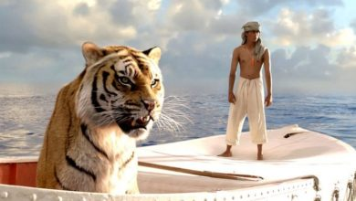 Photo of Life Lessons: 10 Life Lessons From The Life Of Pi