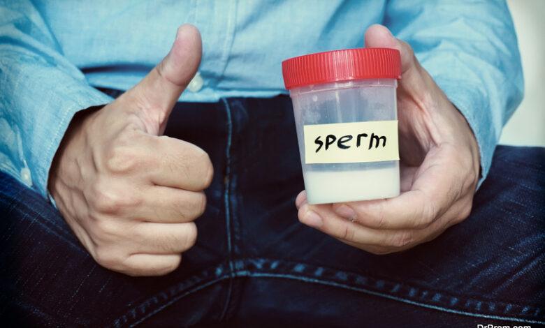 Sperm Retrieval Procedure