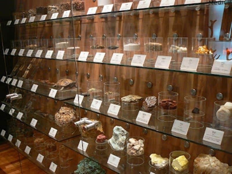 Seoul's-Herb-Medicine-Museum
