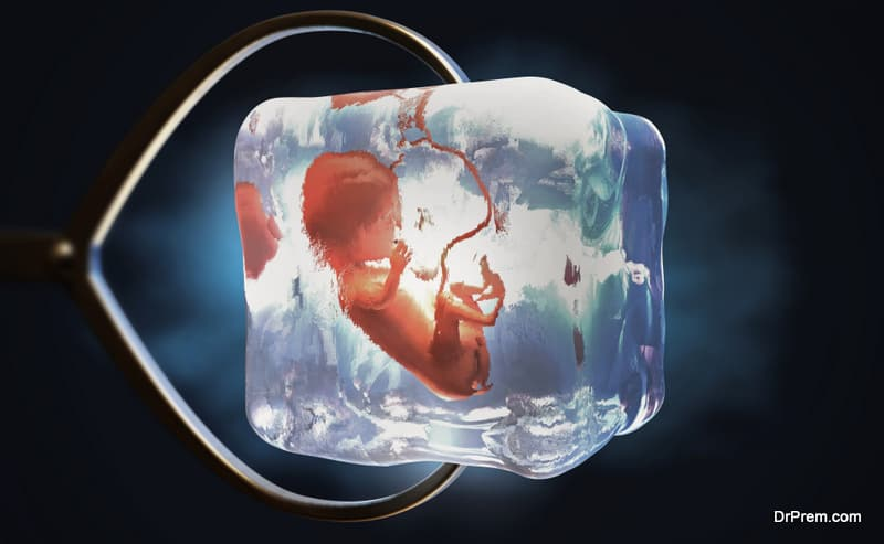 embryo freezing
