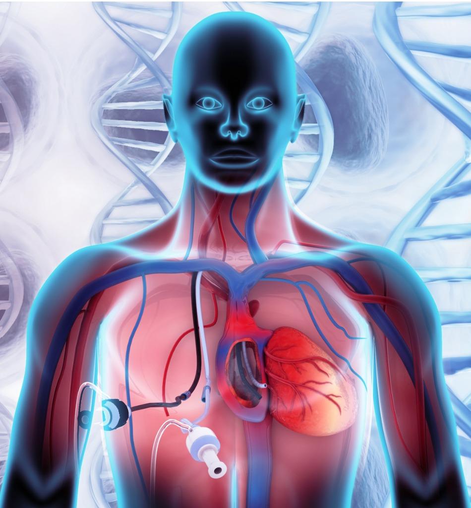 Hemodialysis-Procedures