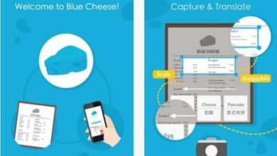 Blue Cheese app - Review