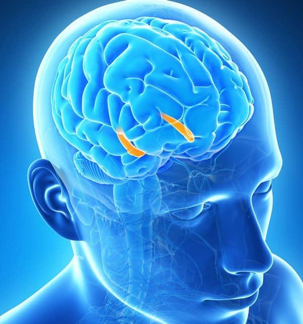 DARPA developing brain implants