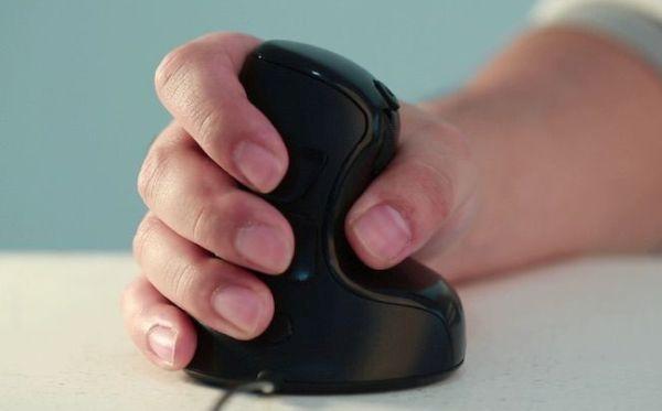 NEST Mouse