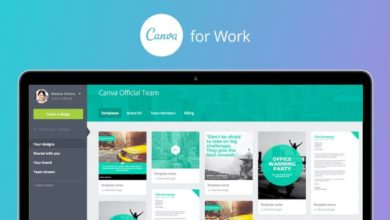 Photo of The complete guide to Canva: Online Graphic Design App