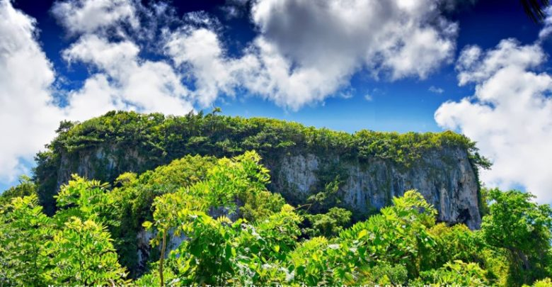 Photo of My Photography – Dominican Republic is Green Heaven On Earth