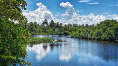 Nagua Dominican Republic By Dr Prem Jaygasi