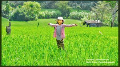 Photo of My Bali Trip Photos At Mesmerising Puri Dajuma Resort