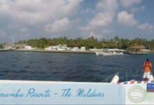 Serene Ocean Maldives Scuba Diving & Watersports Thoddoo - Dr Prem Jagyasi