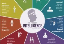Photo of The Types Of Intelligence By Mark Vital
