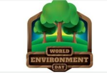 Photo of 21 Simple Ways to Support Sustainability On This World Environment Day