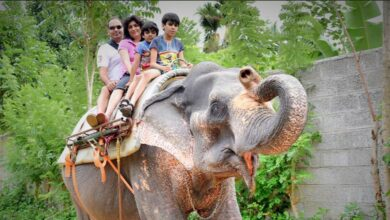 Photo of Having A Great Time With My Family Kerala