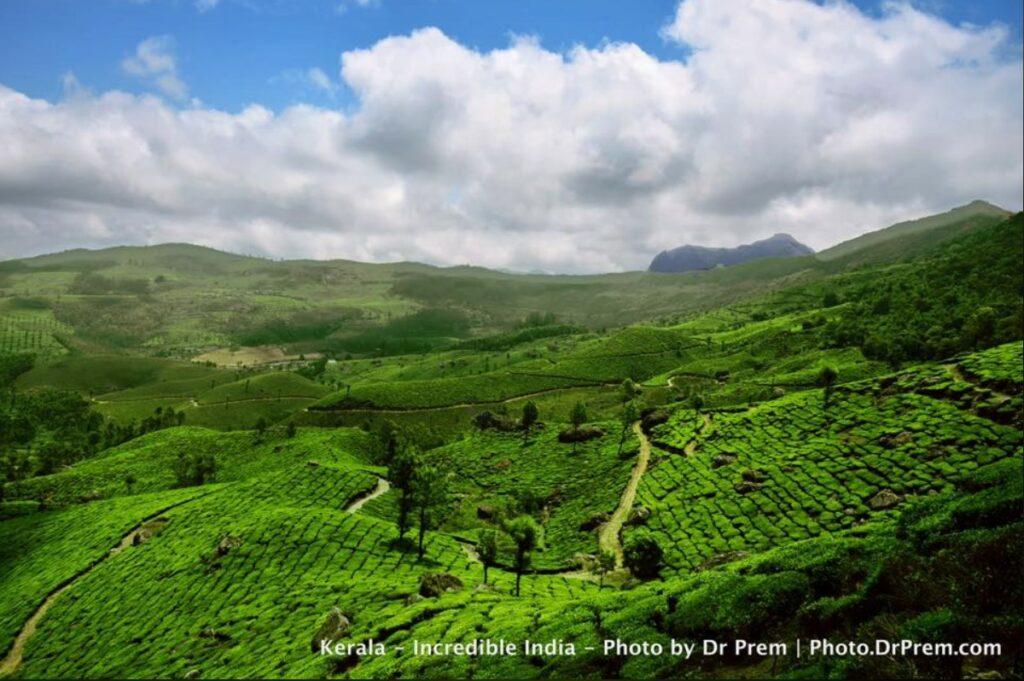 Here Are Some Pics Of Mesmerising, Green And Incredibly Beautiful Kerala - Dr Prem Jagyasi 1