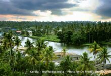 Photo of Here Are Some Pics Of Mesmerising, Green And Incredibly Beautiful Kerala