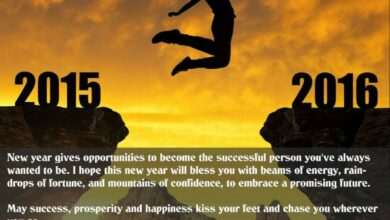 May Success, Prosperity And Happiness Kiss Your Feet And Chase You Wherever You Go - Happy New Year - 2016 - Dr Prem Jagyasi