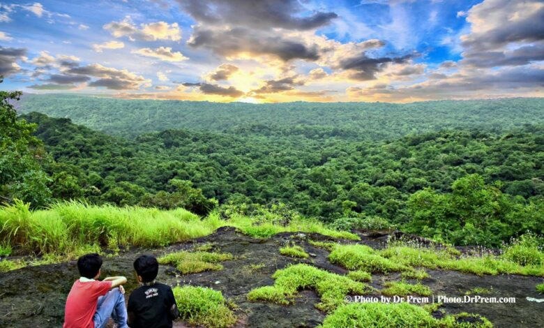 Photo of Pics From Our Upper Trail Hiking At Sanjay Gandhi National Park