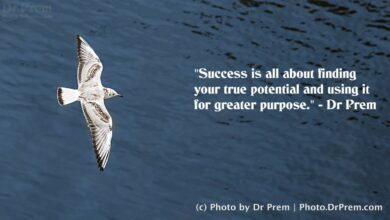 Success - Thought Of The Day By Dr Prem Jagyasi