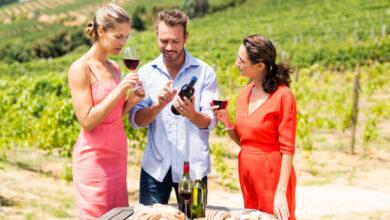Wine Tourism by Dr Prem