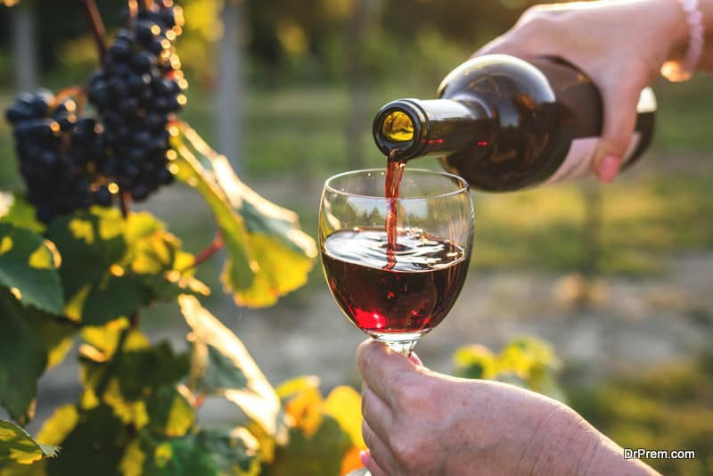 Woman pouring red wine at vineyard