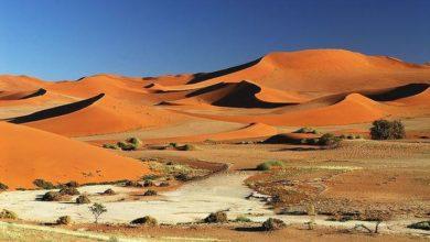 Photo of Places to visit Sossusvlei & Deadvlei pan, Namibia