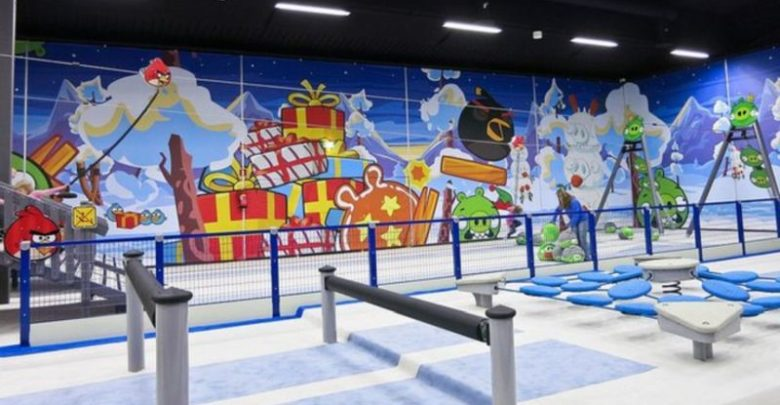 The Amusing Angry Bird Activity Parks
